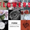 FlowersCOVER