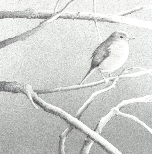 Sul ramo, 2007, tecnica mista su carta, cm 25x25