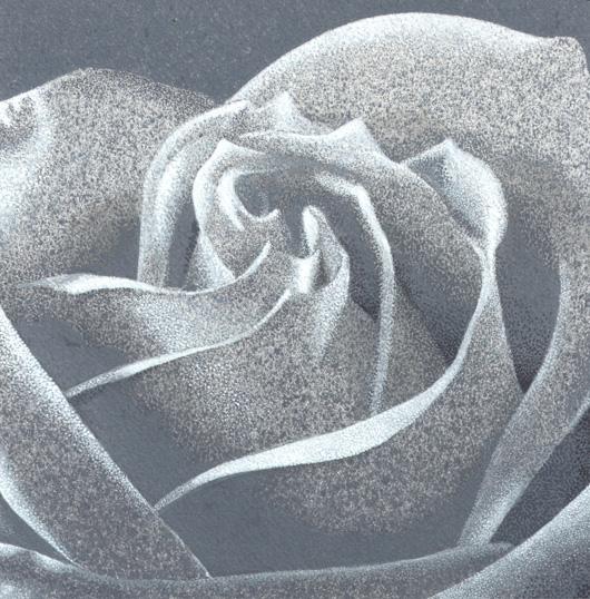 Rosa 5, 2010, tecnica mista su carta, cm 20x20