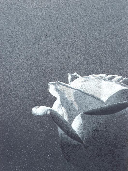 Rosa 2, 2010, tecnica mista su carta, cm 20x20