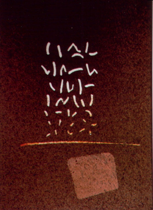 Totale, 1992, acquerello, cm 18x24