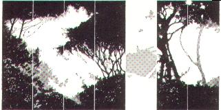 Bosco, 1973, acquerello, cm 50x35