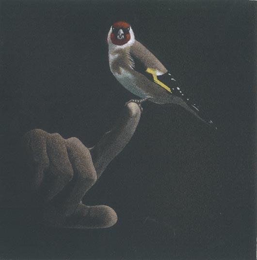 Sul dito, 2011, tecnica mista su carta, 23x23cm