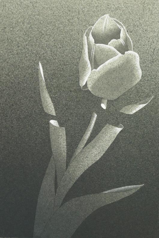 Violato, 2015, tecnica mista, cm 13x18